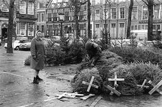 kerstboom-2